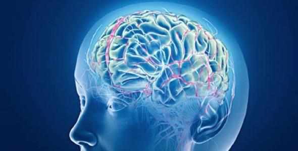 Neuroplasticity & Quantum Physics